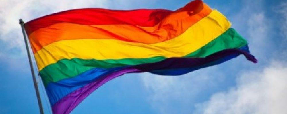 Origen de la bandera gay